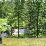 Lekeberga Sälvens naturreservat