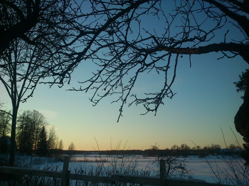 Beskärningsdag i vintervackert landskap