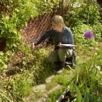 Växt-diskussion inför trädgårdsförvandling