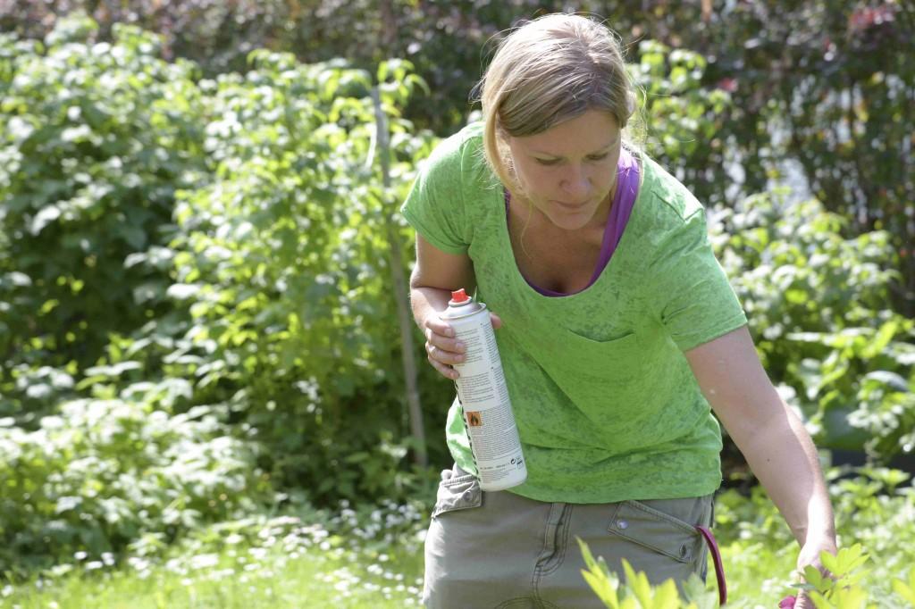 Stina markerar inför trädgårdsförvandling