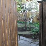 Projekt Snygga upp en innergård på åtta timmar