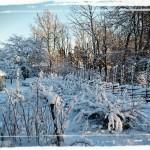 Vintervackert landskap vid trädgårdstorpet