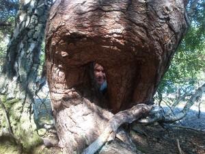 Jag i Trollskogen