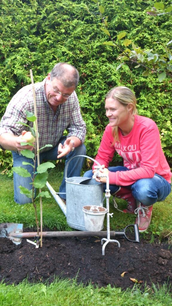 Chris Lambert och Stina Hammar tittar på stinas nyympade och nyplanterade äpplespaljé