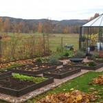 Köksträdgård i kanten av Kilsbergen!
