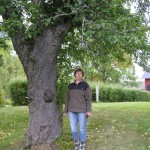 Elisabeth under sitt äppleträd
