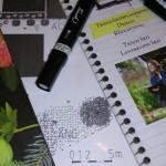 Trädgårdsplanering Trädgårdsdesign