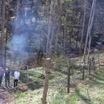 Vår slänt som gränsar till Lekeberga-Sälvens naturreservat