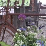 Karslunds trädgårdsdag