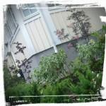 Örebro Entréplantering efter ritning