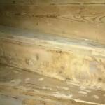 Vi tar fram gammalt trä som ska slipas och målas.