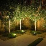 Belysning i trädgården