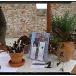 Trädgårdsplanering och rådgivning på Karlslunds trädgårsdag!