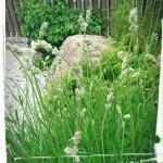 Almby där trädgård tar form
