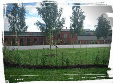 Planteringarna vid Garphyttan Wire tar sig bra. Förälskad i tegelbyggnaderna!