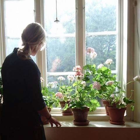 Stina i pelargonfönstret