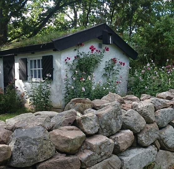 Underbar trädgård på Öland
