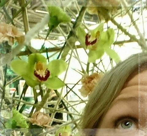 Gröna ögon, gröna orkidéer. Formex.