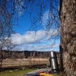 Trädvård i Kilsbergen!