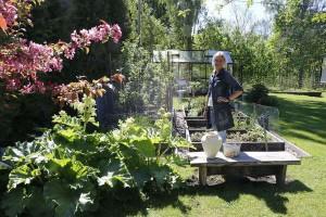 Stina o örtagården