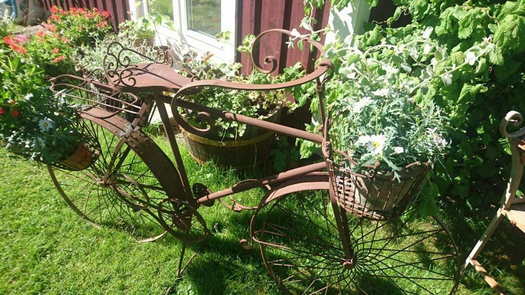 Vår trädgård 2