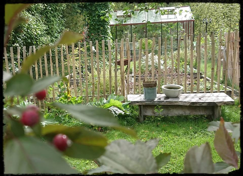 Köksträdgården får staket